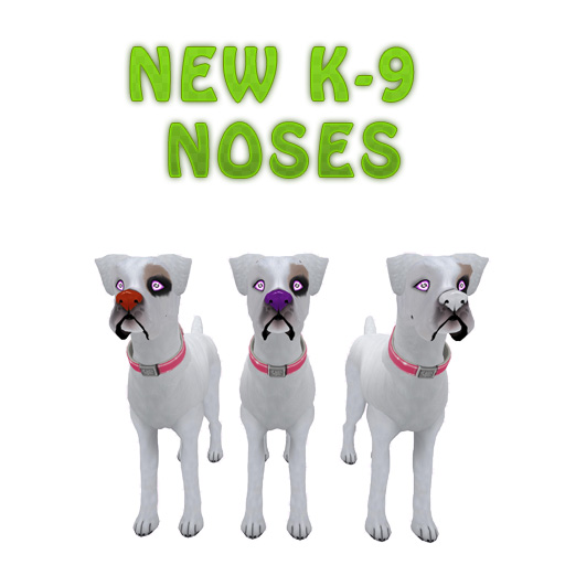 NewNoses2