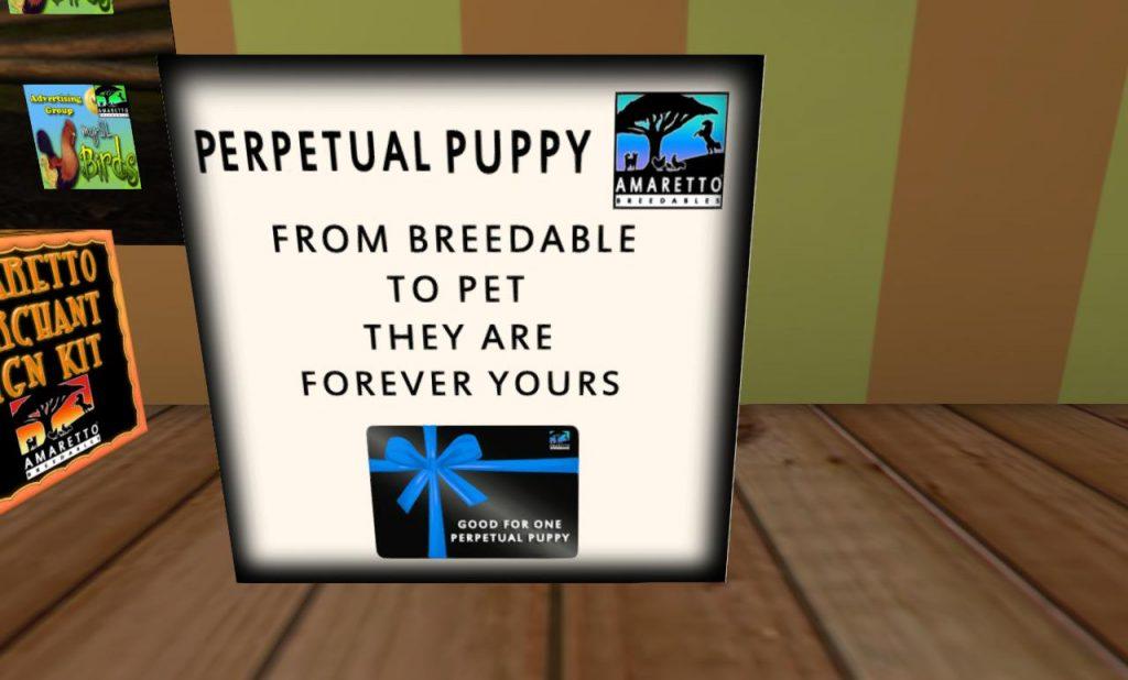 pep puppy_001