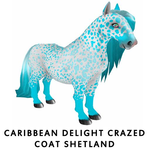 Caribbean_DelightShetland