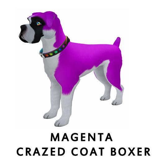 MagentaBoxer