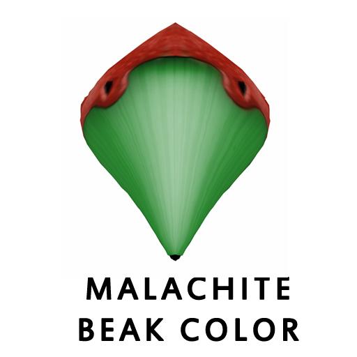 MalachiteBeak