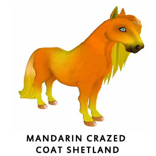 MandarinCrazedShet
