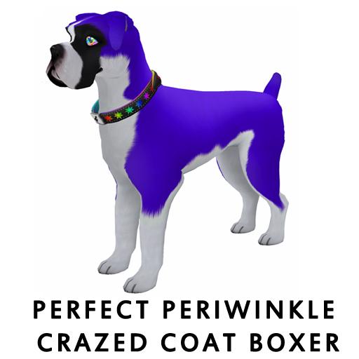 PerfectPeriwinikleBoxer