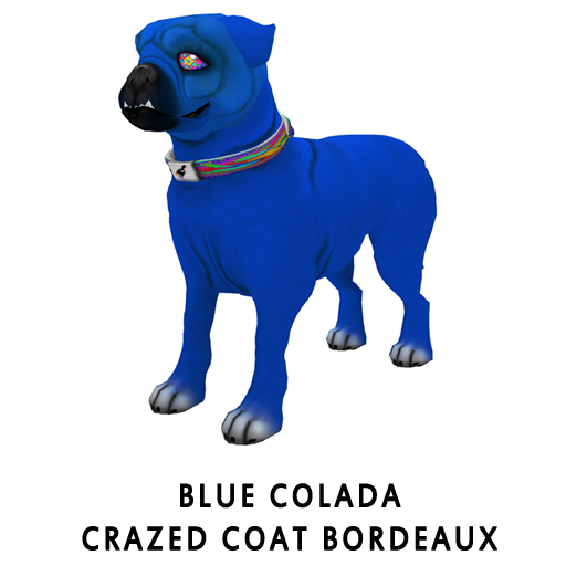 Blue_ColadaCrazed_Coat_Bordeaux