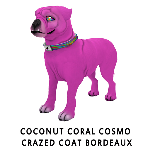 Coconut_Coral_CosmoCrazed_Coat_Bordeaux