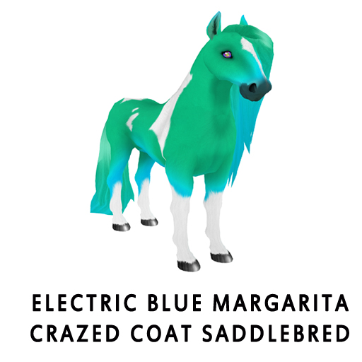 Electric_Blue_MargaritaCrazed_Coat_Saddlebred