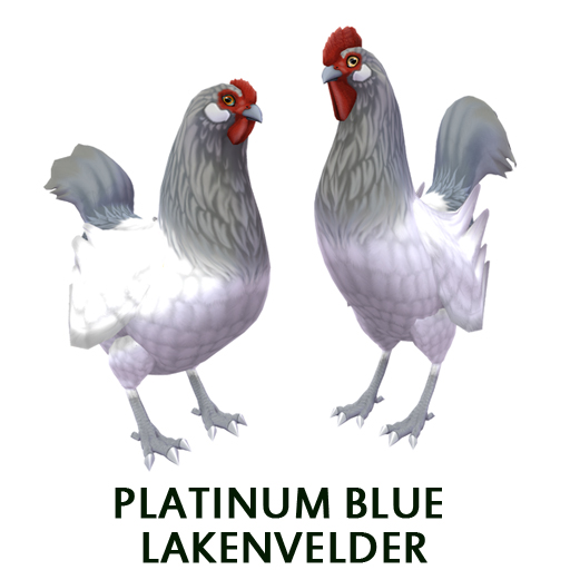Platinum Blue Lakenvelder