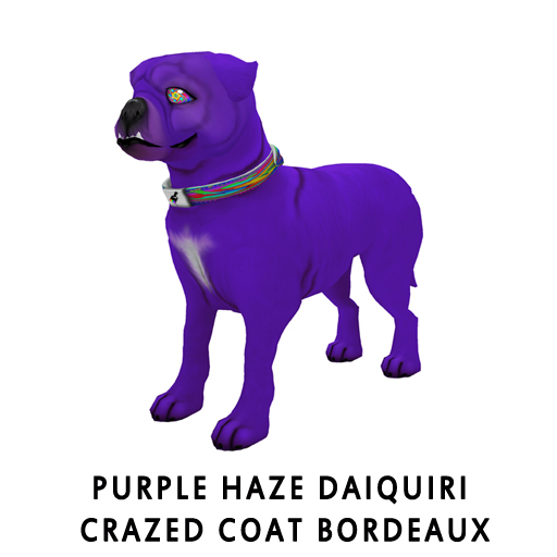 Purple_Haze_Daiquiri_Crazed_Coat_Bordeaux
