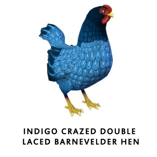 IndigoCrazed_Double_Laced_BarnevelderHen
