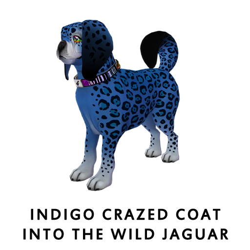 Indigo_Crazed_Coat_Into_The_Wild_Jaguar