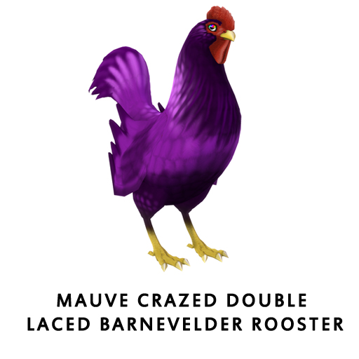 MauveCrazed_Double_Laced_BarnevelderRooster