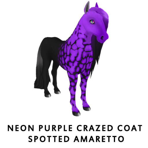 Neon_PurpleCrazed_Coat_Spotted_Amaretto