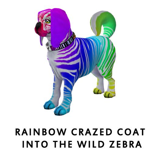 RainbowCrazed_CoatIntothewildZebra