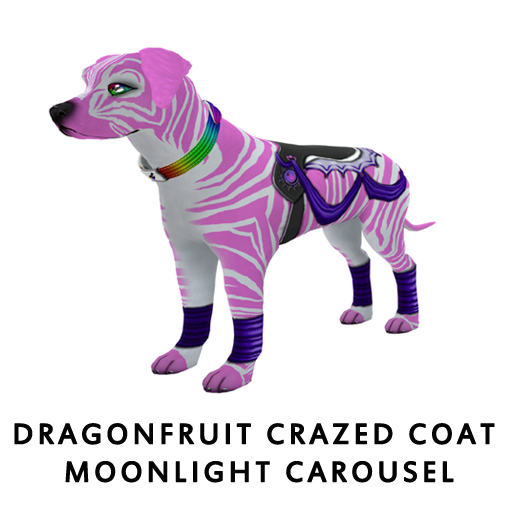 DragonfruitCrazed_Coat_Moonlight_Carousel