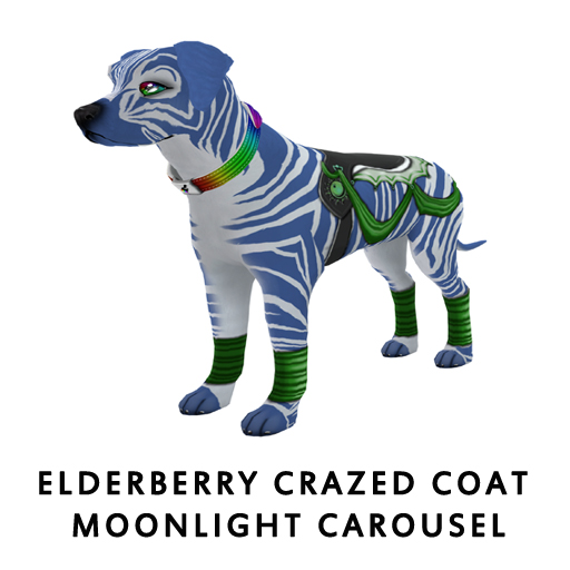 ElderberryCrazed_Coat_Moonlight_Carousel