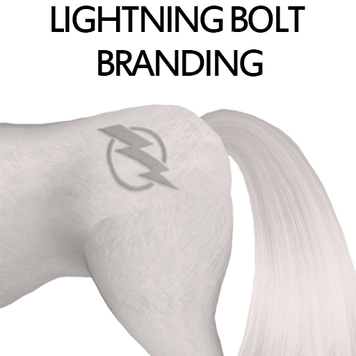 LightingBoltBranding1