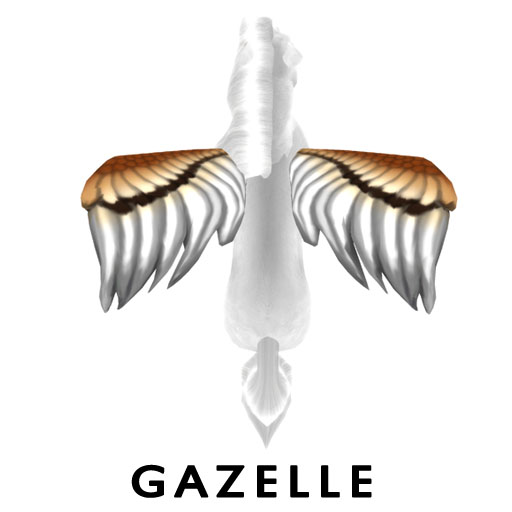 GazelleW