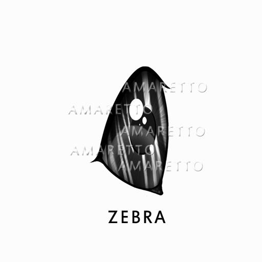 ZebraEyes