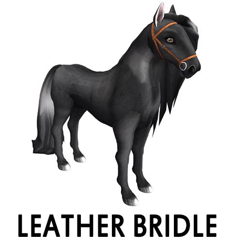 leatherbridle