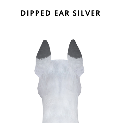 dipped_earsilver