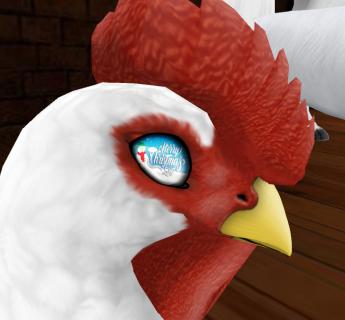 birdeye2