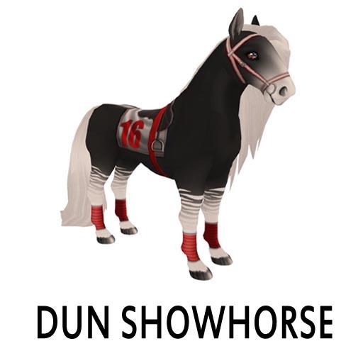DunShowhorse1