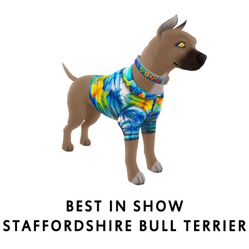 BISStaffordshire_Bull_Terrier