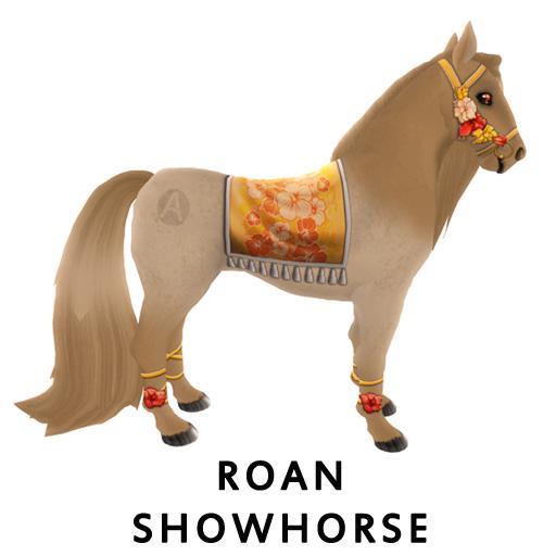 RoanShowhorse2