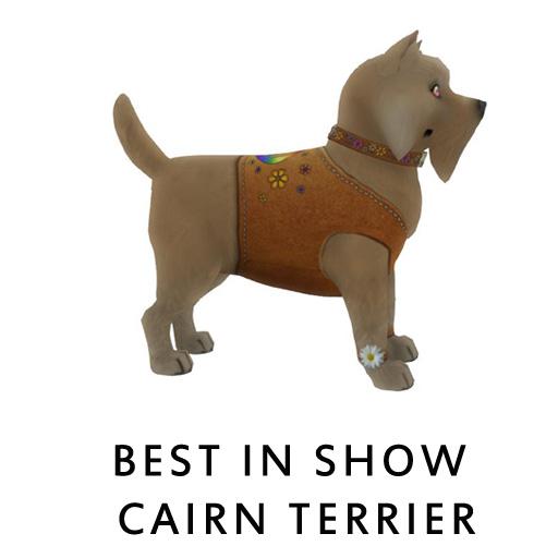 Best_in_Show_Cairn_Terrier1a