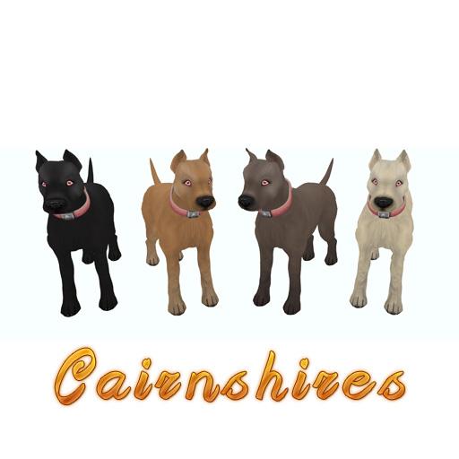 Cairnshires