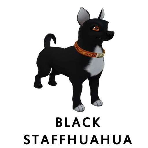 Black Staffhuahua