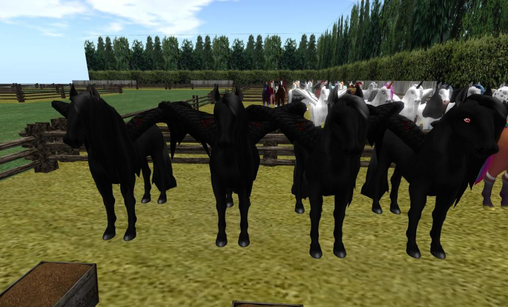 Pams horses_001