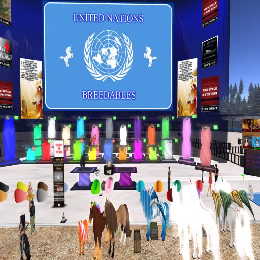 united nations 1
