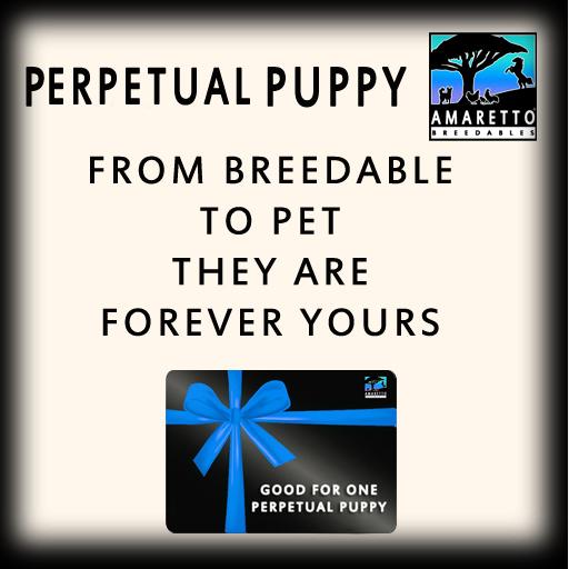 PerpetualPuppy