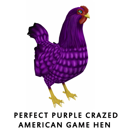 Perfect_PurpleCrazed_American_Game_Hen