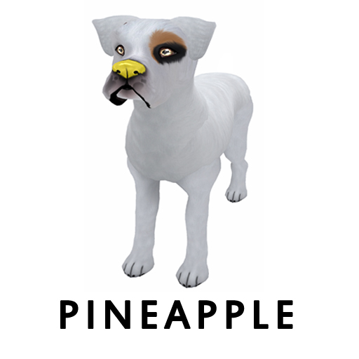Pineapplenose