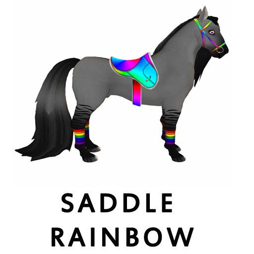 SaddleRainbow