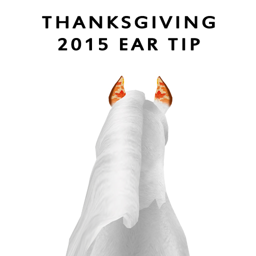 Thanksgiving2015Ear
