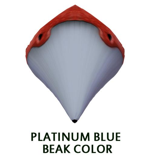 Platinum Blue Beak Color