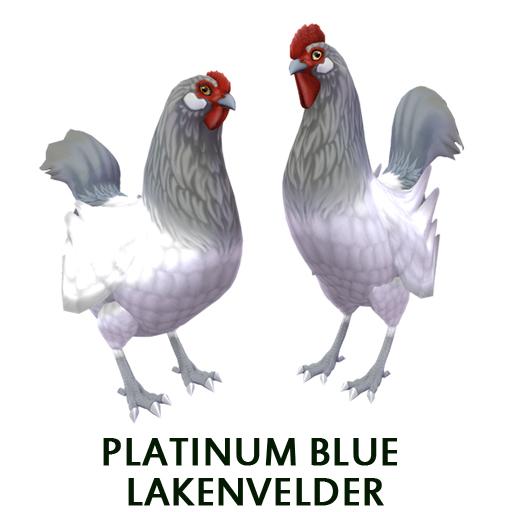 Platinum Blue Lakenvelder