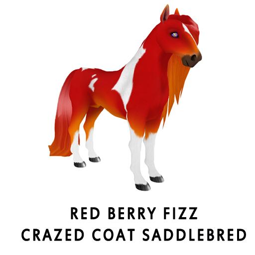 Red_Berry_FizzCrazed_Coat_Saddlebred