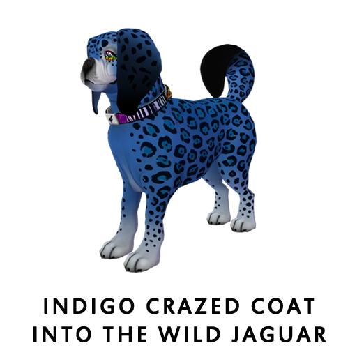 Indigo_Crazed_Coat_Into_The_Wild_Jaguar