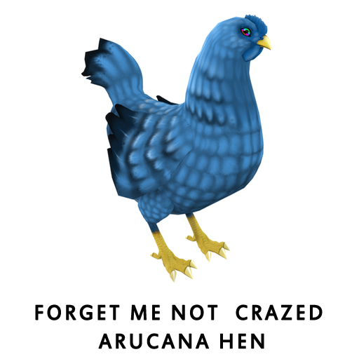 Forget Me Not Crazed ArucanaHen