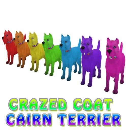 CrazedCarin