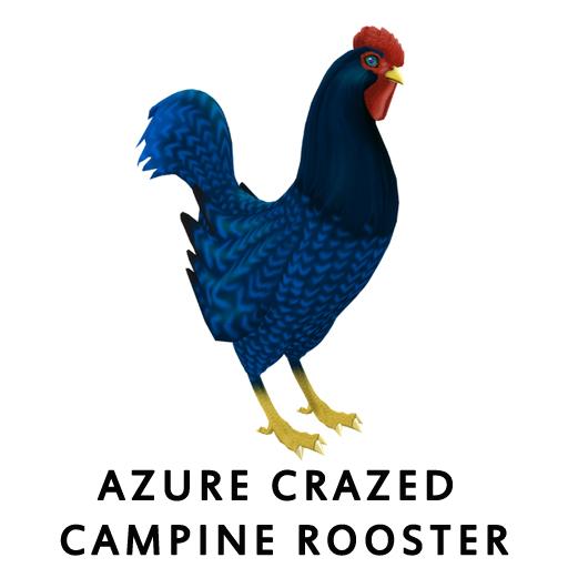 Azure_Crazed_CampineRooster