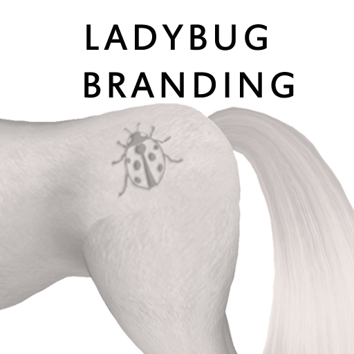 LadybugBranding