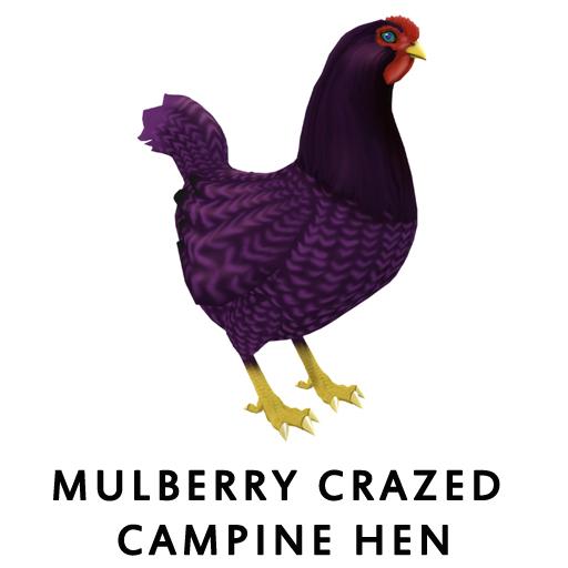 MulberryCrazed_CampineHen