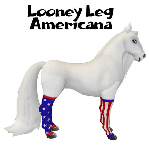 Looney Leg Americana2