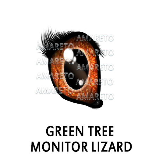 green-tree-monitor-lizard