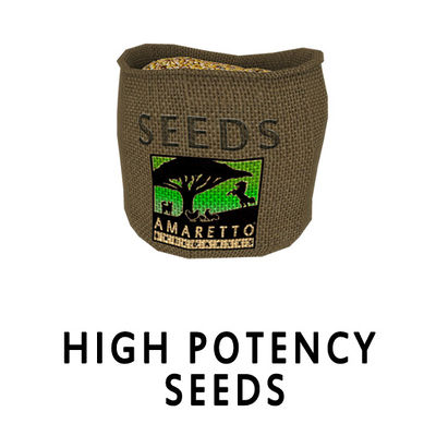 potency-seeds